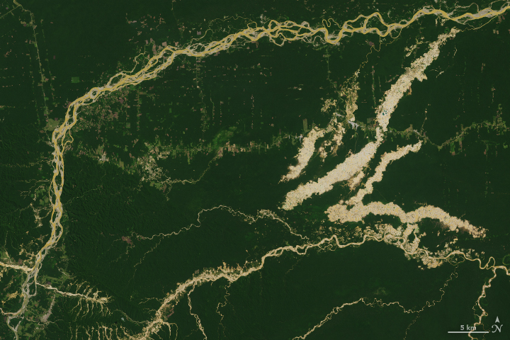 Tracking Peruvian Forest Loss from Space - related image preview