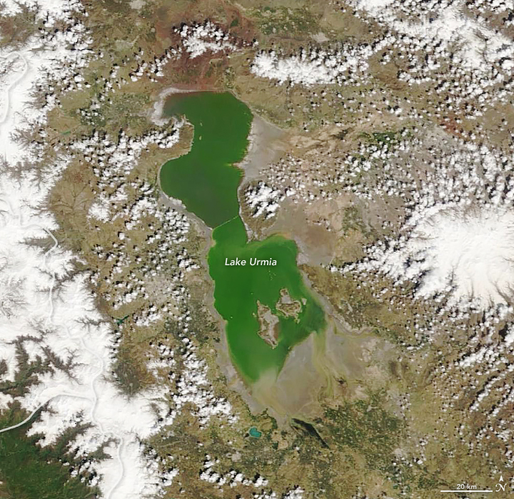 Reviving the Shriveled Lake Urmia