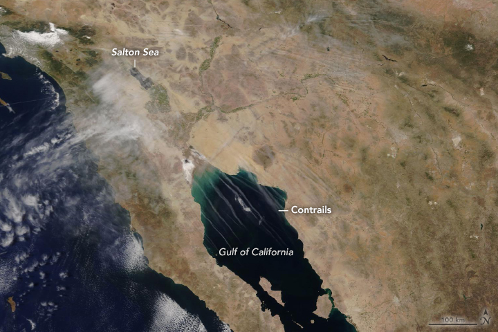 Contrails Over the Gulf of California