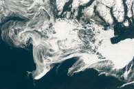 Spring Freeze in the Labrador Sea
