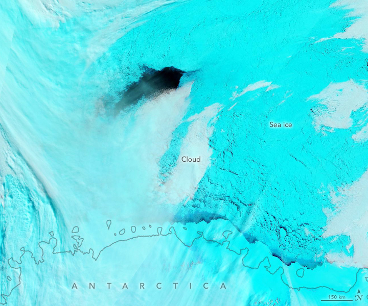 Deciphering the Maud Rise Polynya