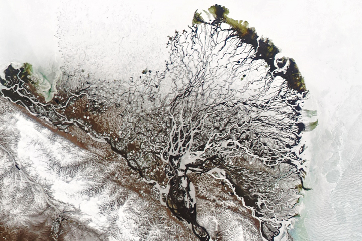 Lena Delta Shakes Off Winter