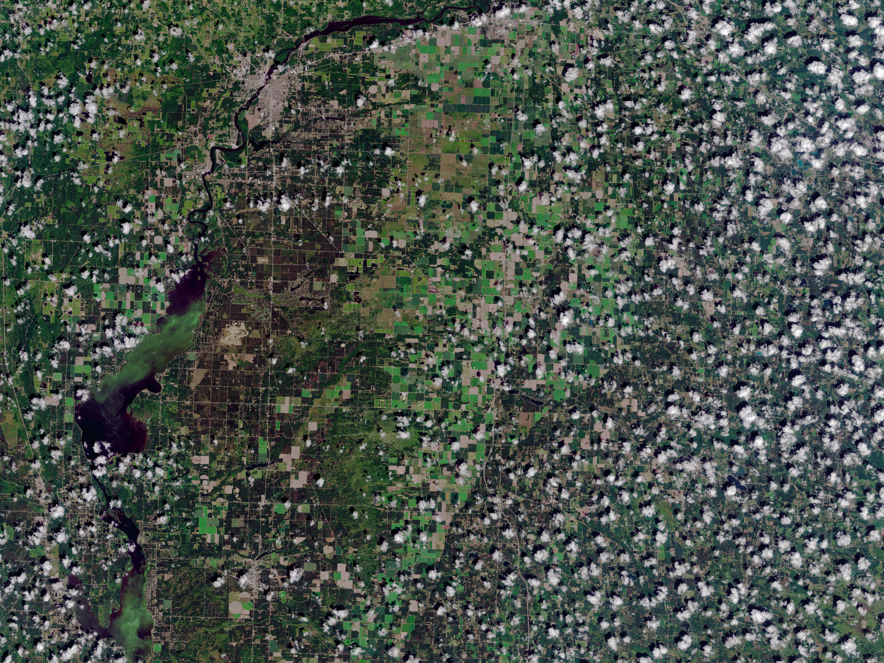 NASA Helps Warn of Harmful Algae in Lakes, Reservoirs - related image preview