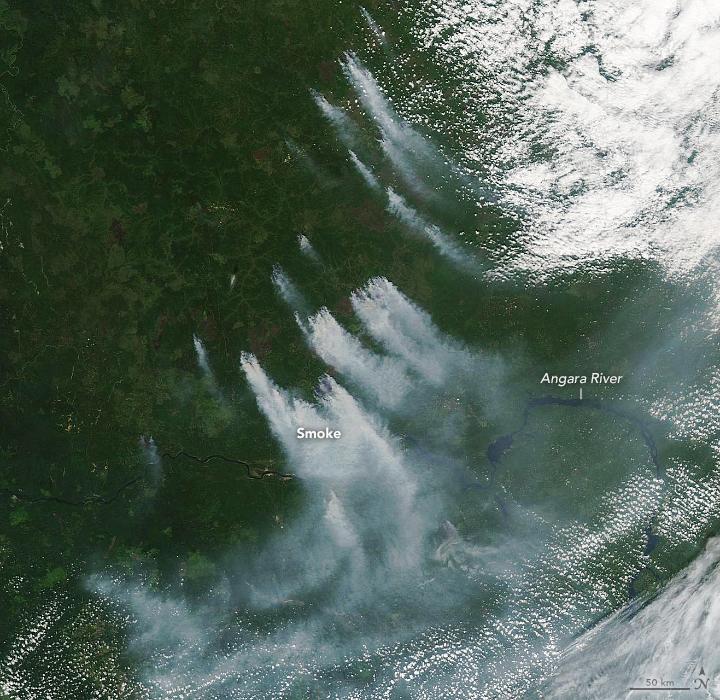 Wildfires in Krasnoyarsk