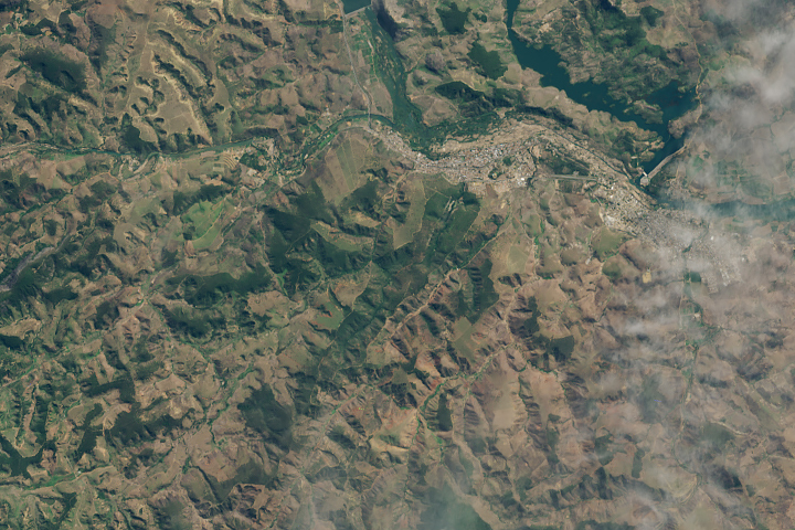 A New Patch of Green in Brazil - selected image
