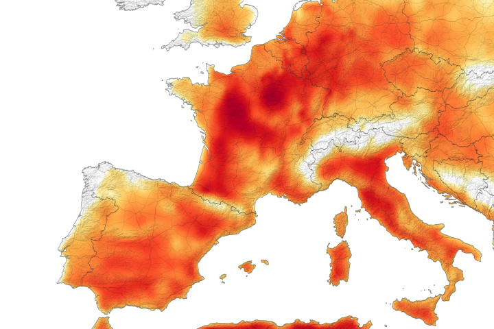 A Second Scorching Heatwave in Europe - selected image