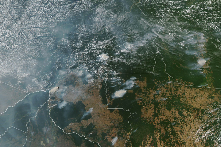 Fires in Brazil - selected image