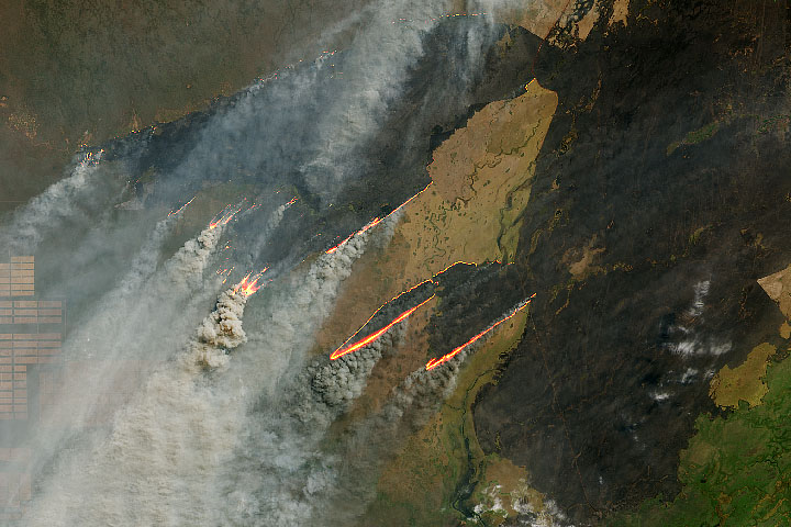 Fire Burns in Paraguay, Bolivia, and Brazil