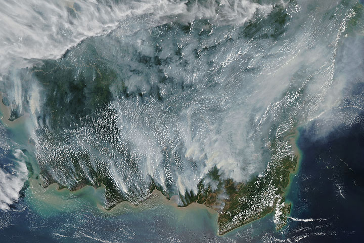 Smoke Blankets Borneo - selected image
