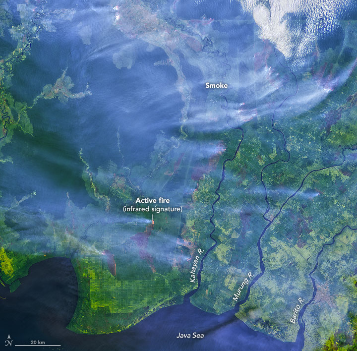 Smoke Blankets Borneo - related image preview