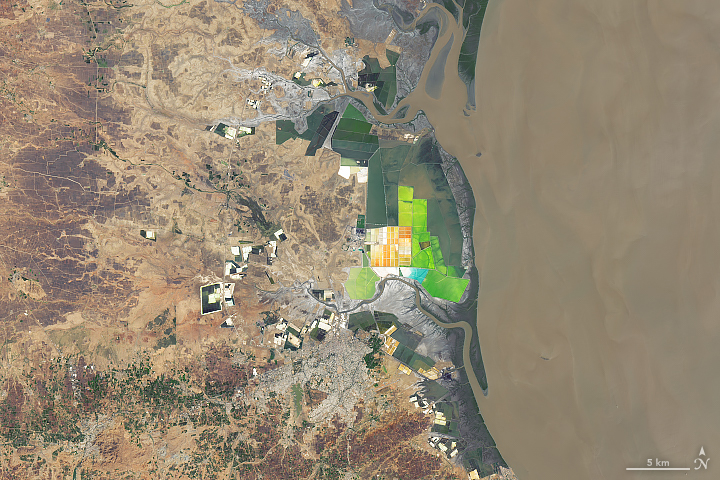India's Largest Salt Producer - related image preview