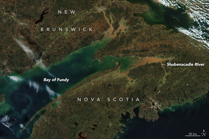 Massive Muddy Tides in the Bay of Fundy
