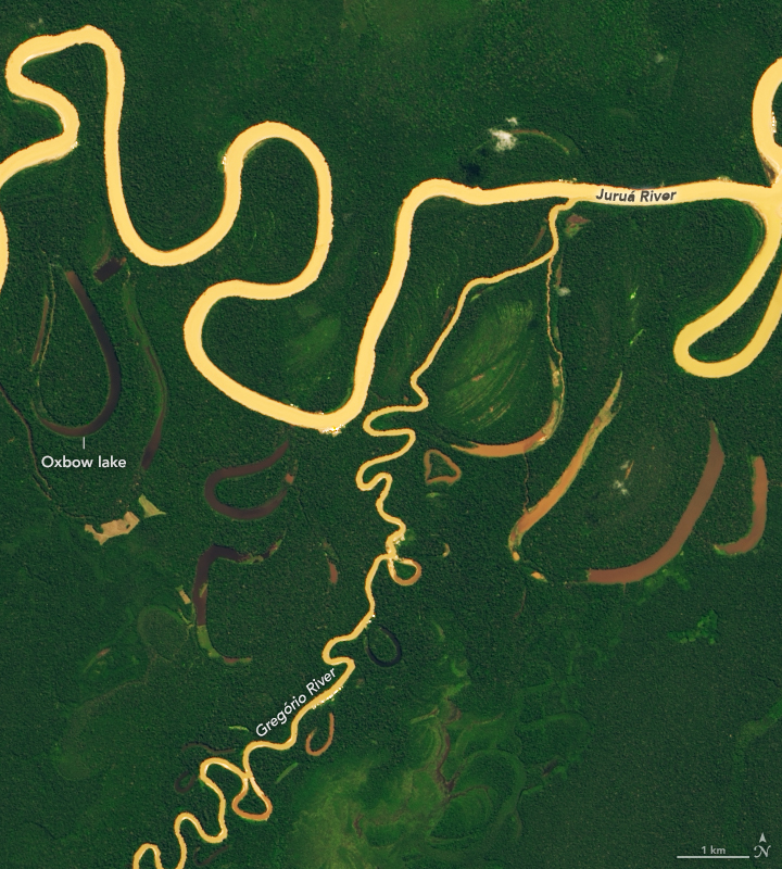 The Many Meanders of the Juruá