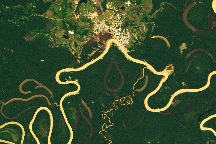 The Many Meanders of the Juruá - selected image