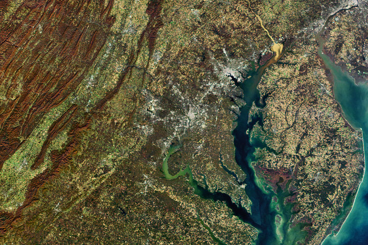 Susquehanna Sediment in the Chesapeake Bay