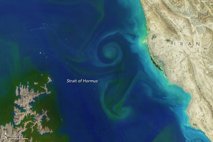 A Bloom in the Strait of Hormuz