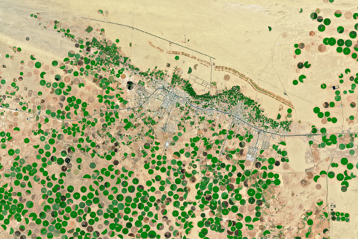 Desert Crops Thrive as the Aquifer Shrinks - selected image