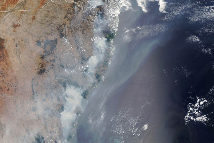 Fires Take a Toll on Australian Forests - selected image