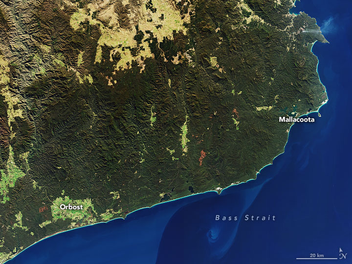 satellite shot south-eastern coast of australia no dust