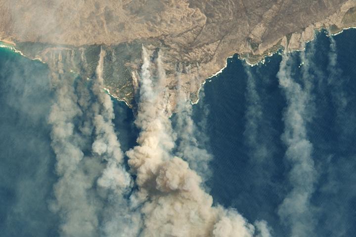 Fires Ravage Kangaroo Island