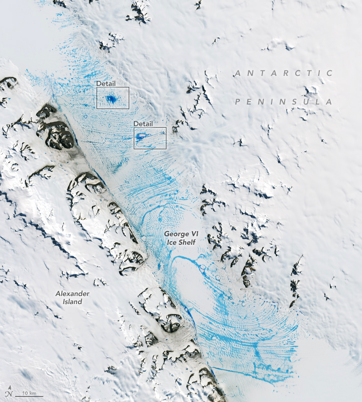Widespread Melt on the George VI Ice Shelf - related image preview