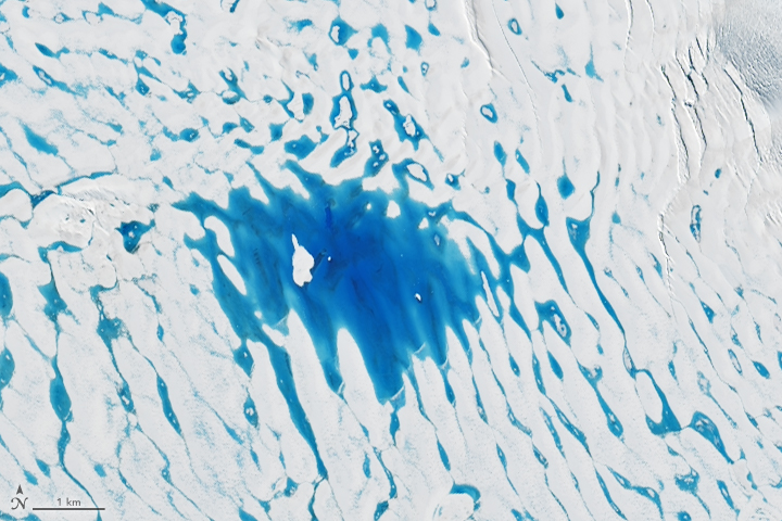 Widespread Melt on the George VI Ice Shelf