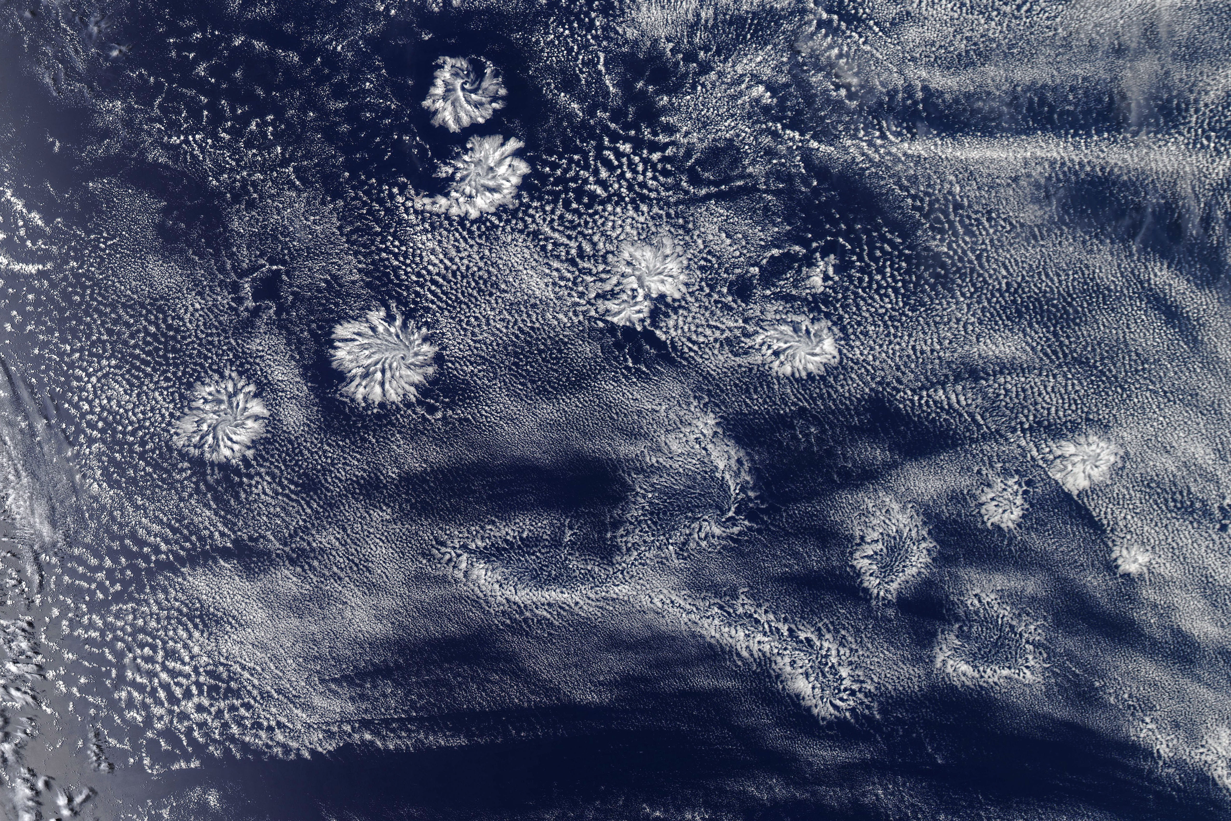 Cloud Rosettes in the Sky - related image preview