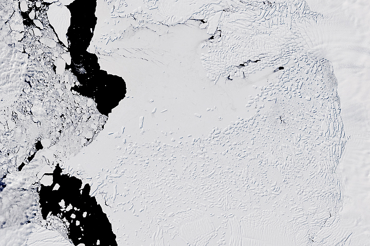 Thwaites Glacier Transformed - selected image