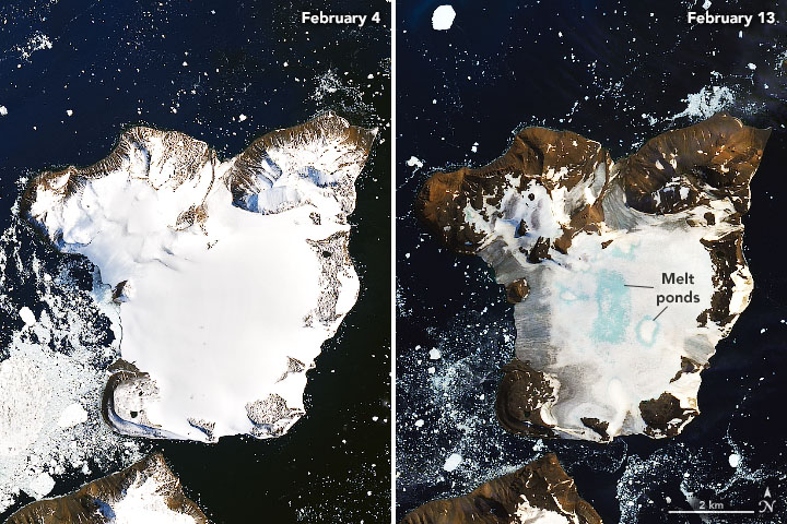 Antarctica Melts Under Its Hottest Days on Record - related image preview