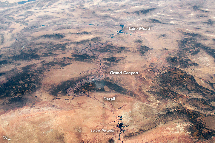 Reservoirs, Bends, and Canyons on the Colorado Plateau