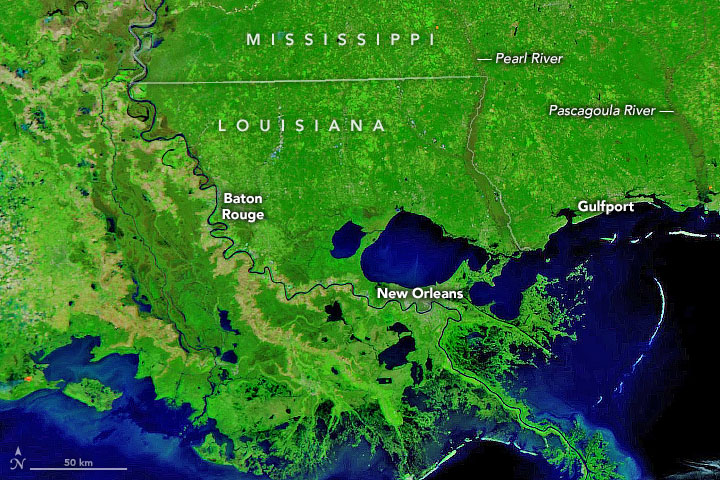 Winter Flooding in Mississippi and Louisiana - related image preview