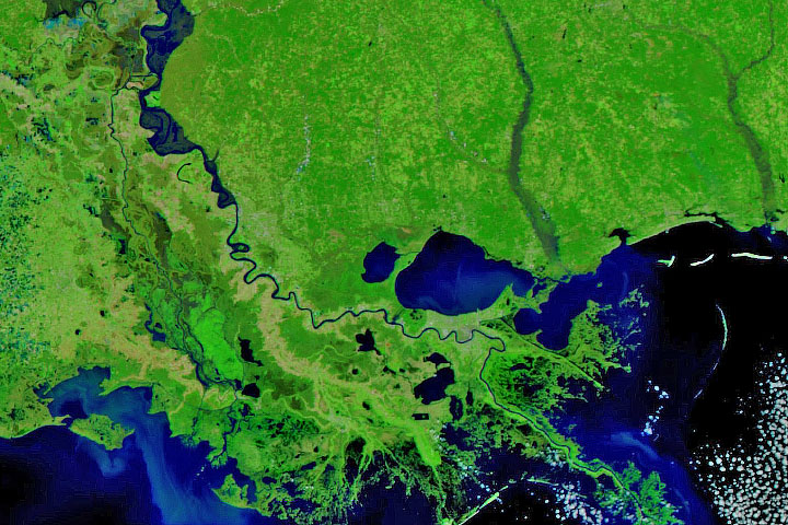Winter Flooding in Mississippi and Louisiana - selected image