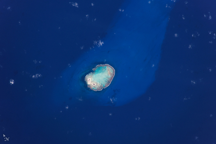 Rocas Atoll - related image preview