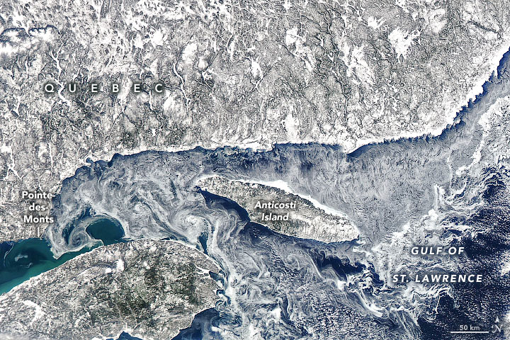 Ice Eddies in the Gulf of St. Lawrence - related image preview