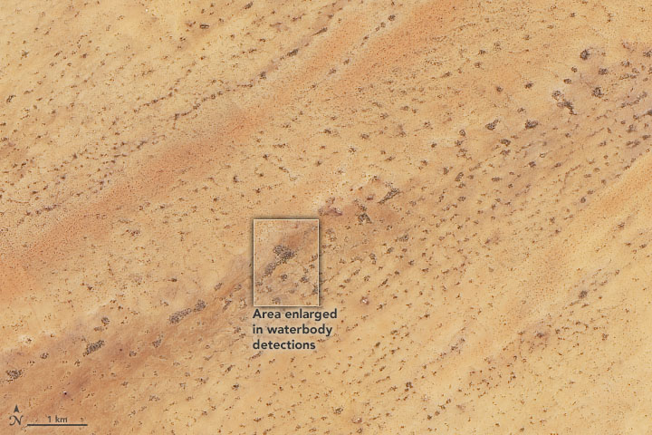 Scouting Watering Holes from Space - related image preview
