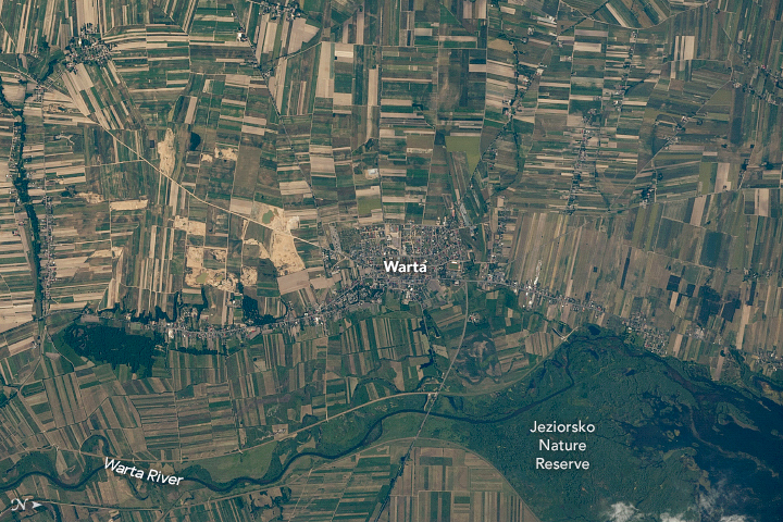 Agriculture Fields in Central Poland - related image preview