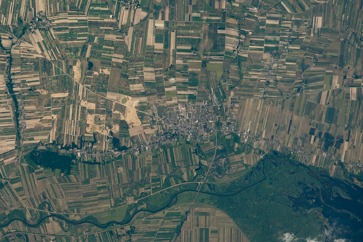 Agriculture Fields in Central Poland