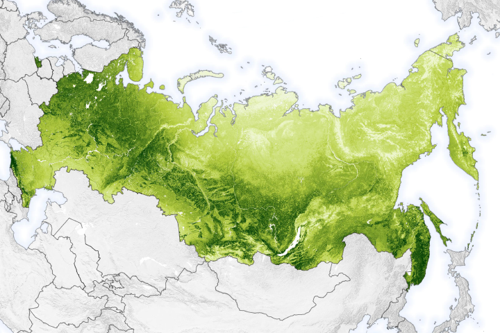 Mapping Moose Populations in Russia - selected image