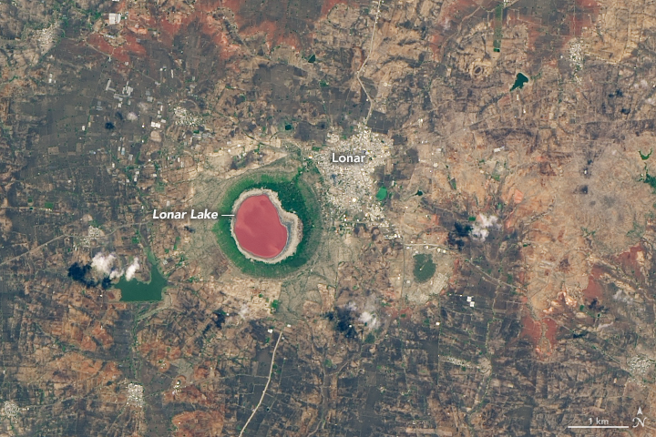 Lonar Lake Tries On a Rosy Color
