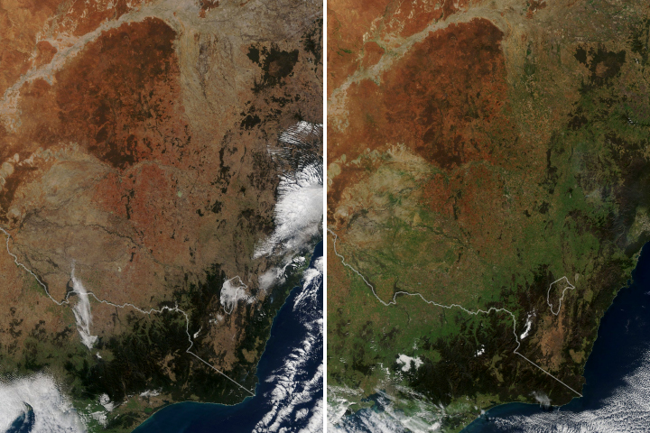 Southeastern Australia Turns Green - selected image