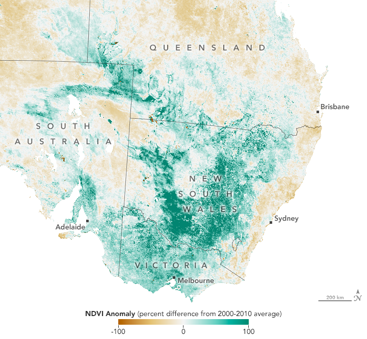 Southeastern Australia Turns Green - related image preview