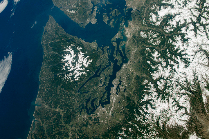 Pacific Northwest Bathed in Green and White