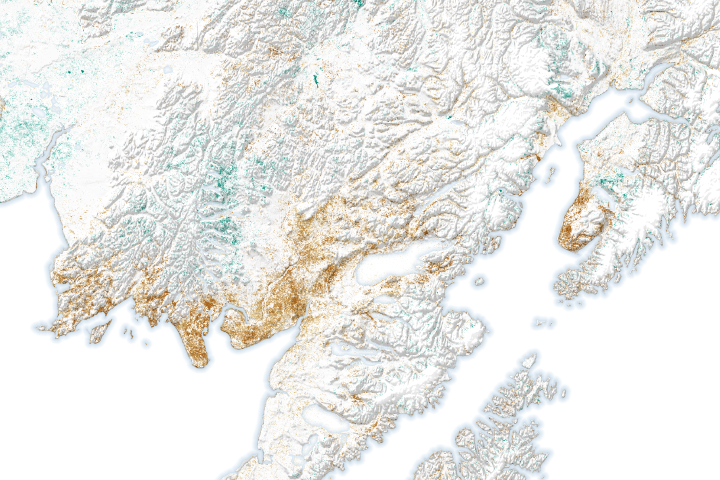 Alaska's Vegetation is Changing Dramatically - selected image