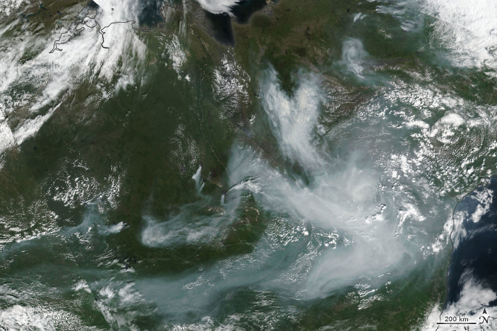 Another Intense Summer of Fires in Siberia - related image preview