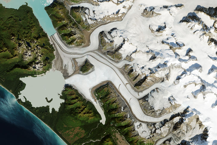 Grand Plateau Glacier - selected image
