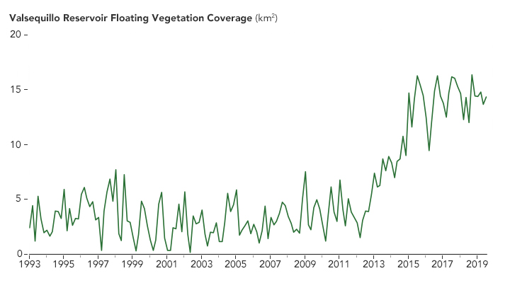 A Global Water Hyacinth Invasion - related image preview