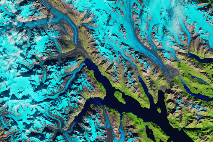 Where Ice Still Flows into Glacier Bay - selected image