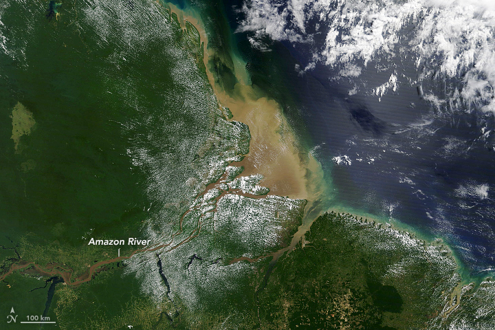 Mud from the Andes Carried by the Amazon