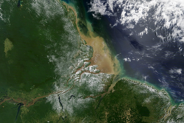 Mud from the Andes Carried by the Amazon - selected image
