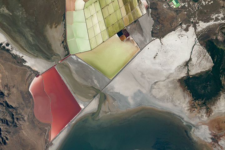 Coloring the Great Salt Lake - selected image